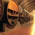 El Museo de las Ciencias del Vino de Almendralejo