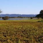Lagunas y Llanos de la Albuera
