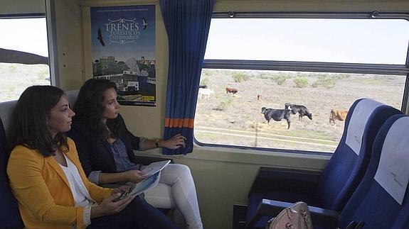ext_tren--575x323